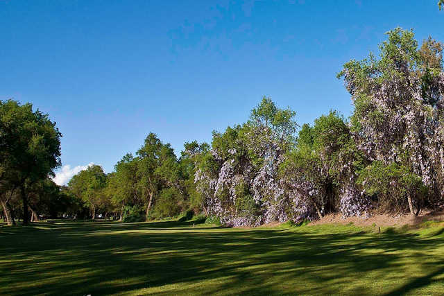 A view of fairway #8 at Sherwood Forest Golf Course