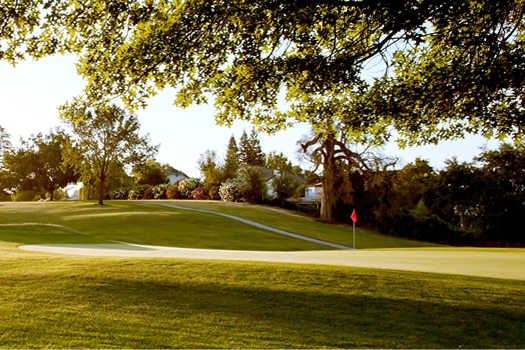 A sunny day view of a green at Woodcreek Golf Club