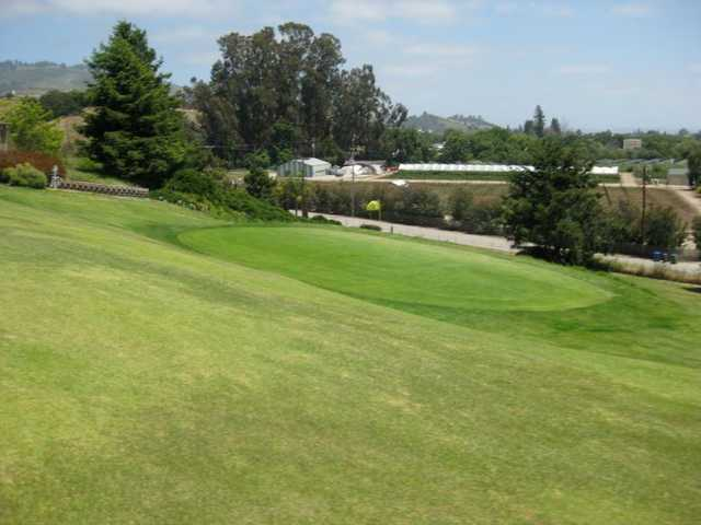 A view of a green at Casserly Golf Course