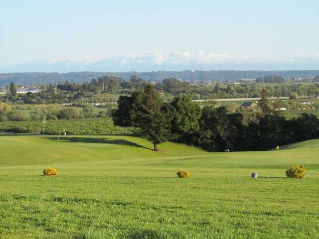 A view from Casserly Golf Course