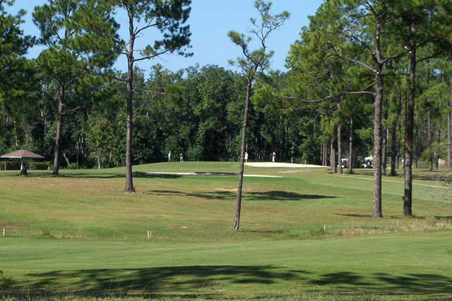 A sunny day view from Cypress Lakes Golf Club