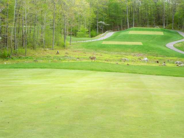 A view of a tee at Crestbrook Park Golf Course