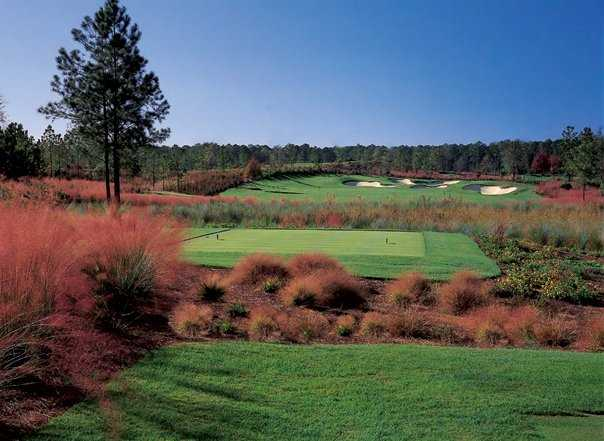 A view from a tee at Berkeley Hall Golf Club