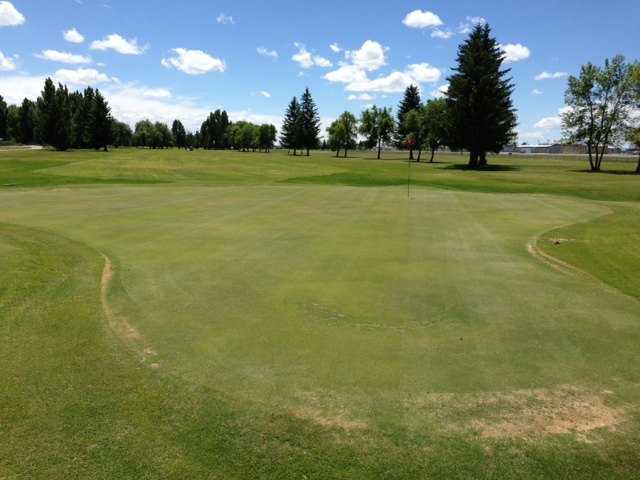A view of a green at Legacy Golf Course