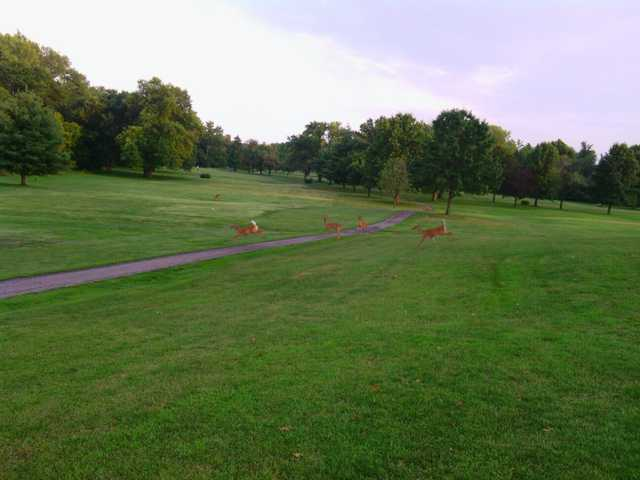 A view of a tee at New Albany Springs Golf Course