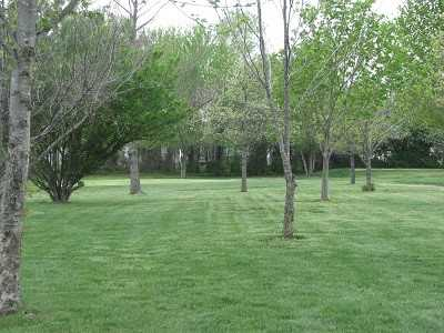 A view of a green at Blackberry Trails Golf Course