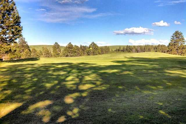 A sunny day view of a green at Pine Meadows Golf Club