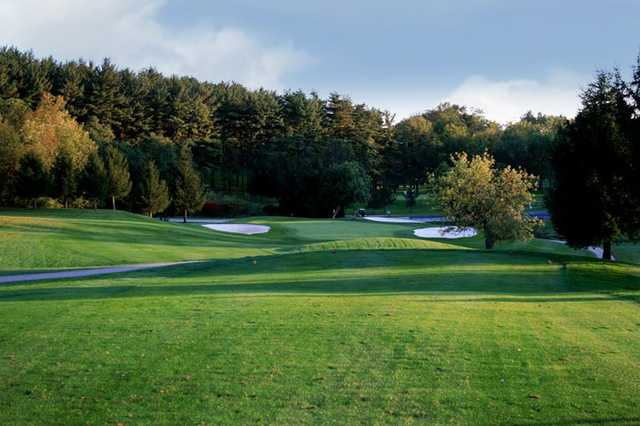 A view of a green flanked by bunkers Honey Run Golf Club