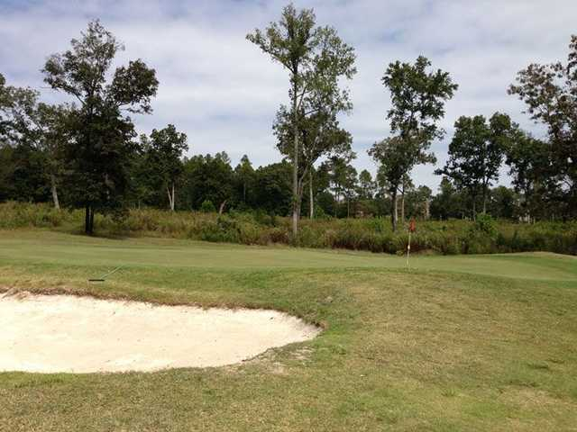 A view of a green protected by a bunker at Indian River Golf Club