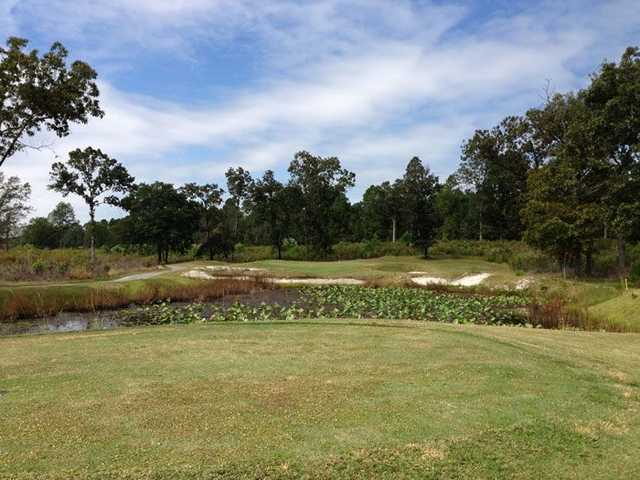 A view over a pond from Indian River Golf Club