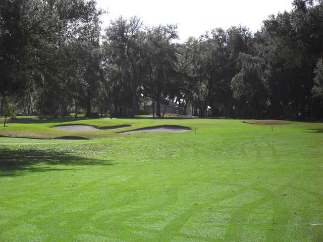 A view of a green surrounded by bunkers at Country Club of Sebring