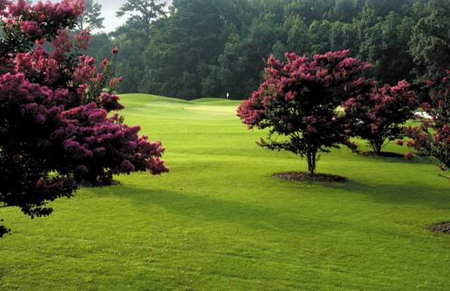 A view from Brays Island Plantation Golf Club