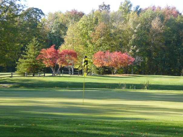 A view from Michigan Meadows Golf Course
