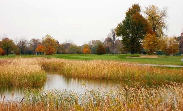 A view of hole #16 surrounded by water at Chandler Park Golf Course