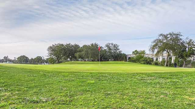A view of a green at Suncoast Golf Center