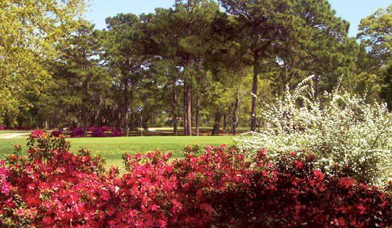Sunkist Country Club in Biloxi, MS