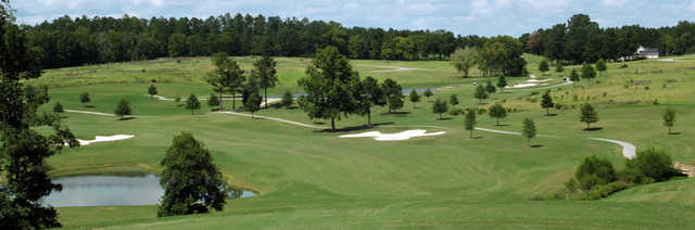 View of the 1st fairway and green from the Independent Course at Mount Vintage Plantation Golf Club