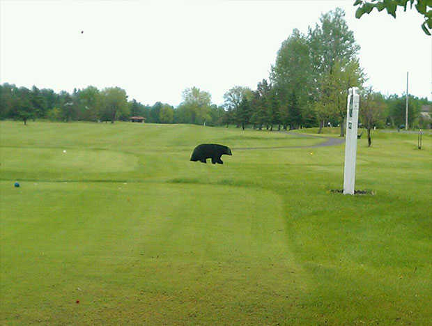 A view from a tee at Nemadji Golf Course