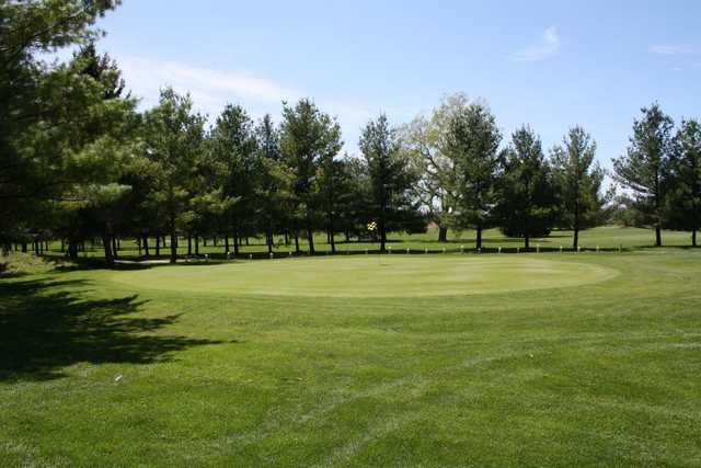 A view of a green at Gold from MontHill Golf and Country Club