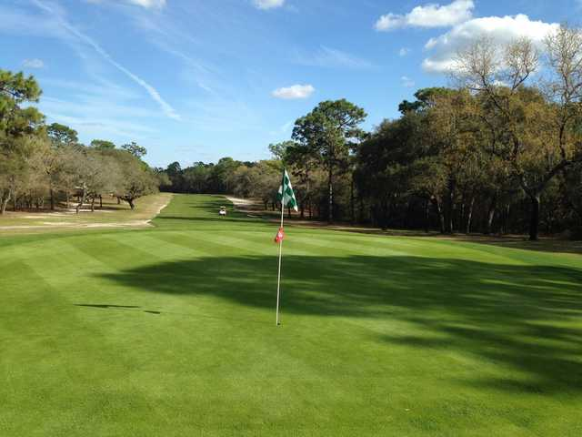 A sunny view of a green at Pine Ridge Golf Club