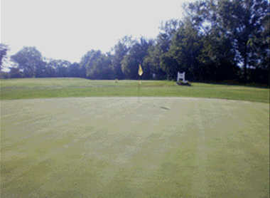 A view of a hole at Vandalia Country Club (Americantowns)