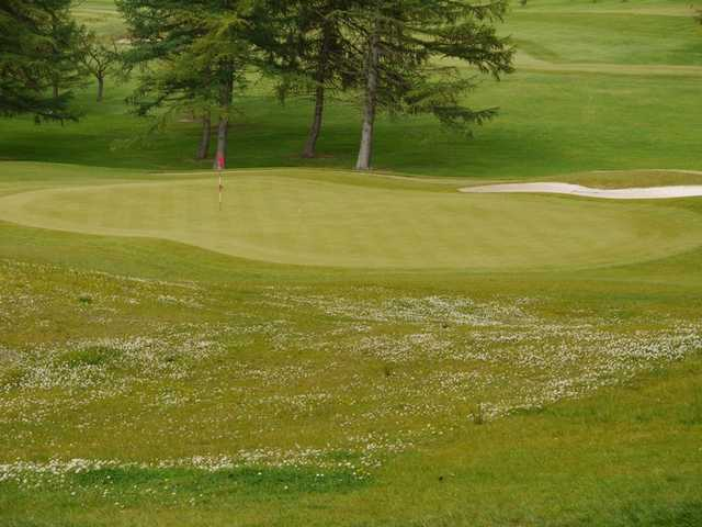 A view of a green at Williamwood Golf Club