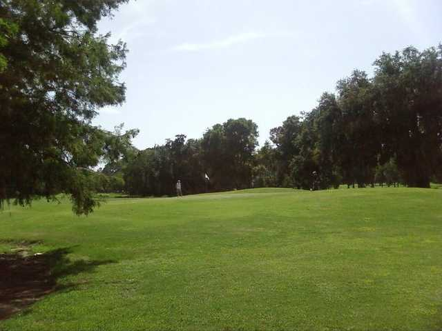 A view from Cypress from Bacon Park Golf Course