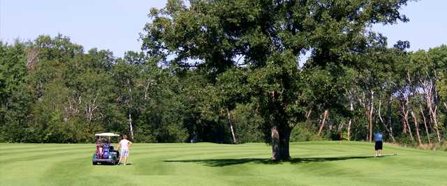A view of a green at Sandhills Golf and Country Club