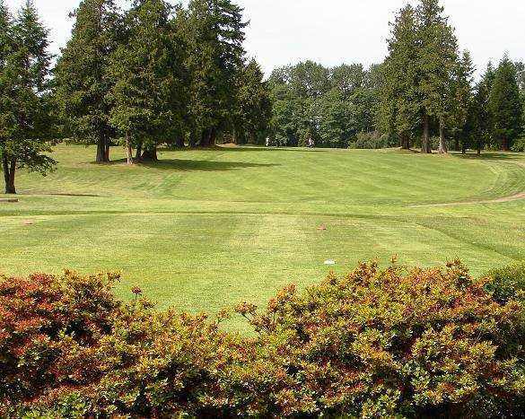 A view of a tee at Burnaby Mountain Golf Course