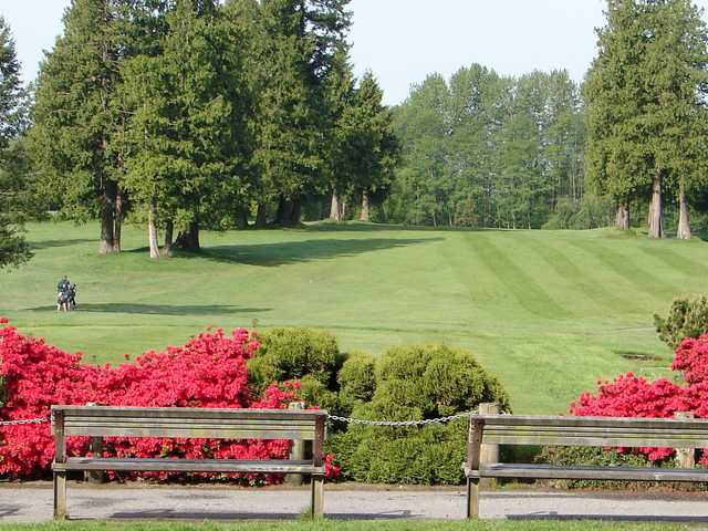 A sunny day view from Burnaby Mountain Golf Course