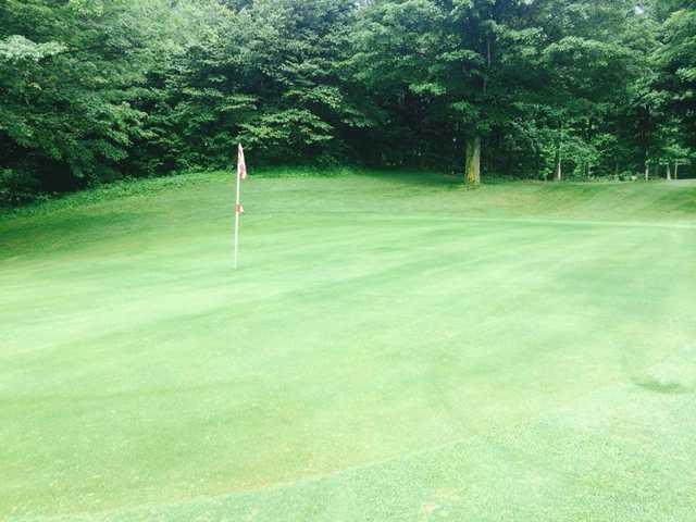 A view of a hole at Farm Golf Club