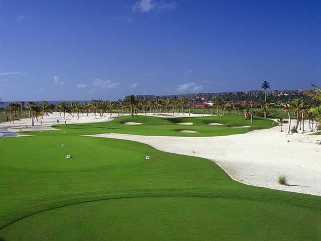 A view from a tee at Cap Cana - Punta Espada