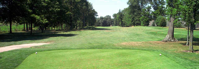 A green view from Sable Creek Golf Course
