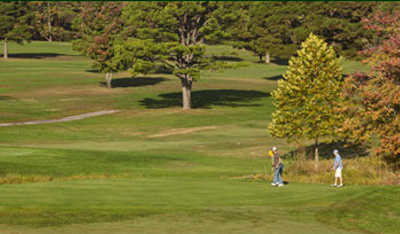 A view from Spring Creek Golf Club