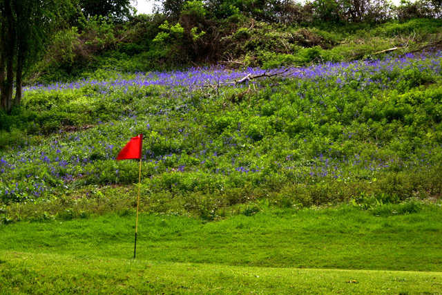 A view of hole #3 at Badger Course from Grove Golf & Bowl