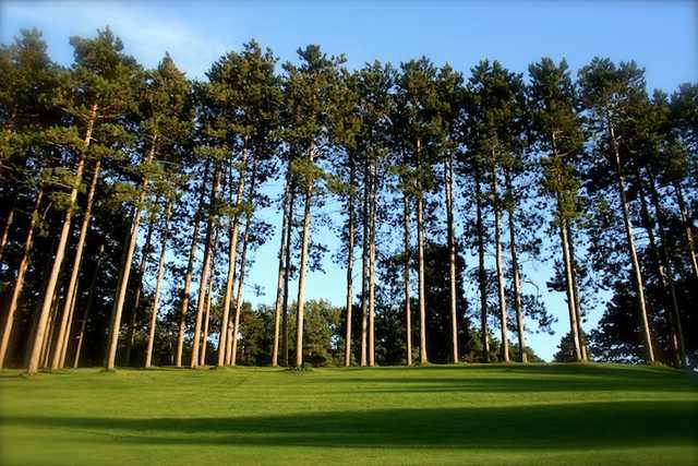 A sunny view from Pine Valley Golf Club