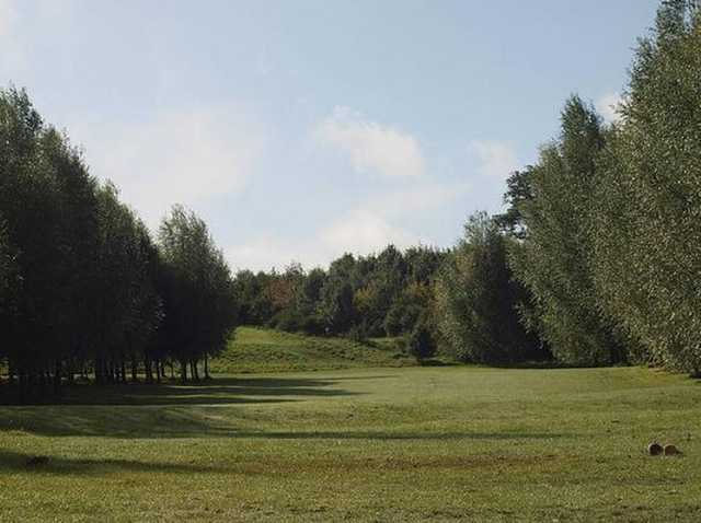 A tough dog leg tee shot at Brierley Forest Golf Club