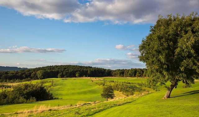 The approach to the 3rd green at Silkstone Golf Club