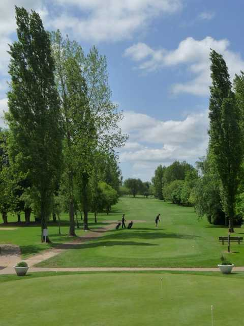 Mature trees line the fairway at Windmill Hill