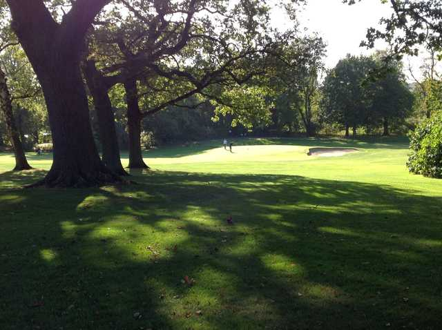 View of the 11th green through the trees at Chester-le-Street Golf Club