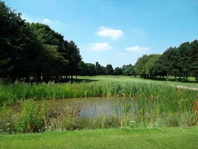 A view from the 4th green looking across the pond at Panshanger Golf Club