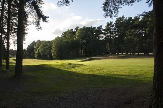 View from the trees on the 11th at Market Rasen Golf Club