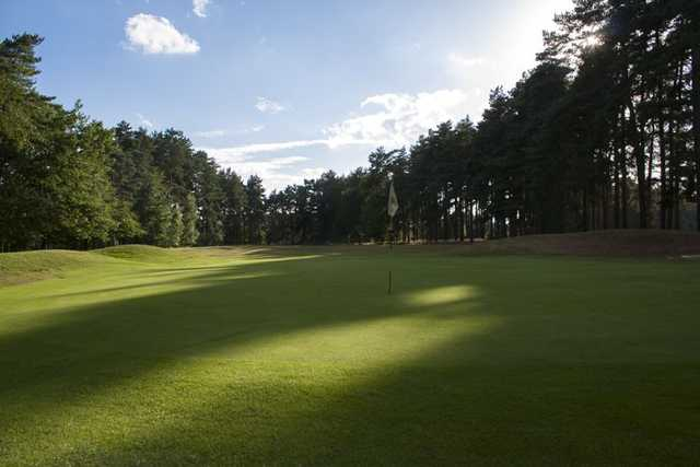 Great greens at Market Rasen Golf Club