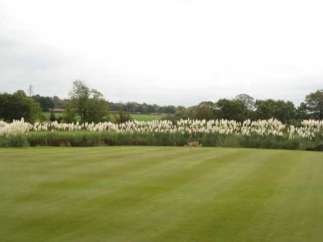 A look at the 18th green at Berrington Hall Golf & Country Club