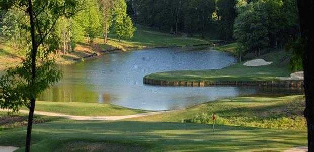 View of the 7th green from the Gold course at Cobblestone Park Golf Club