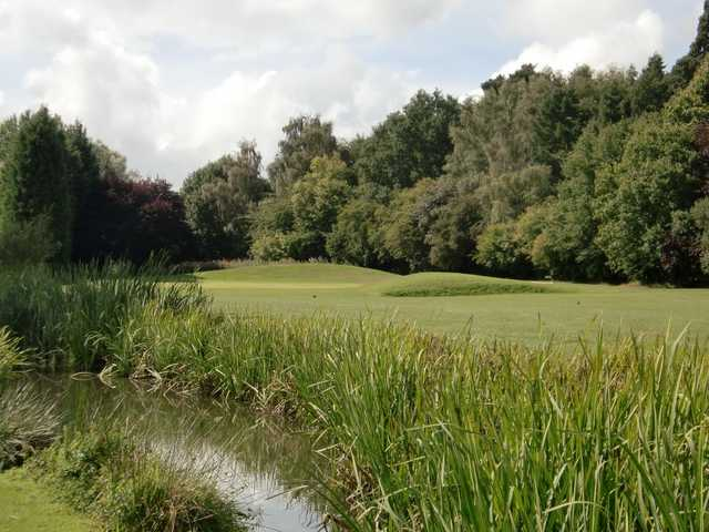 Looking over the pond towards the 16th green at Downshire GC