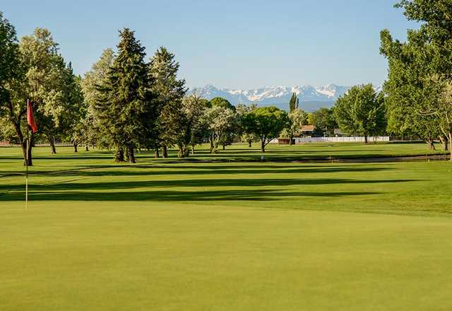 View of a green at Black Canyon Golf Course