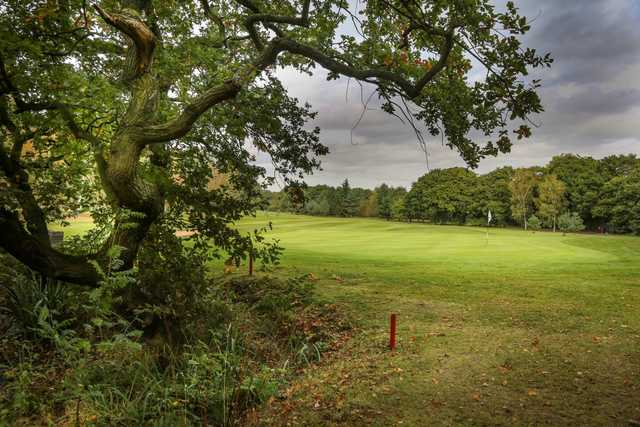 View from behind the tree of the 9th green at Helsby Golf Club