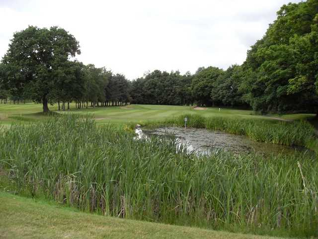 The pond that stands between the tee and the green on the 14th at Romiley