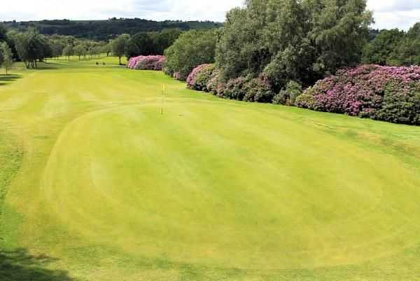The 6th hole, Longhurst, at Mellor is an elevated green with a slight dogleg approach